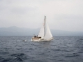 i_93_segeln_007